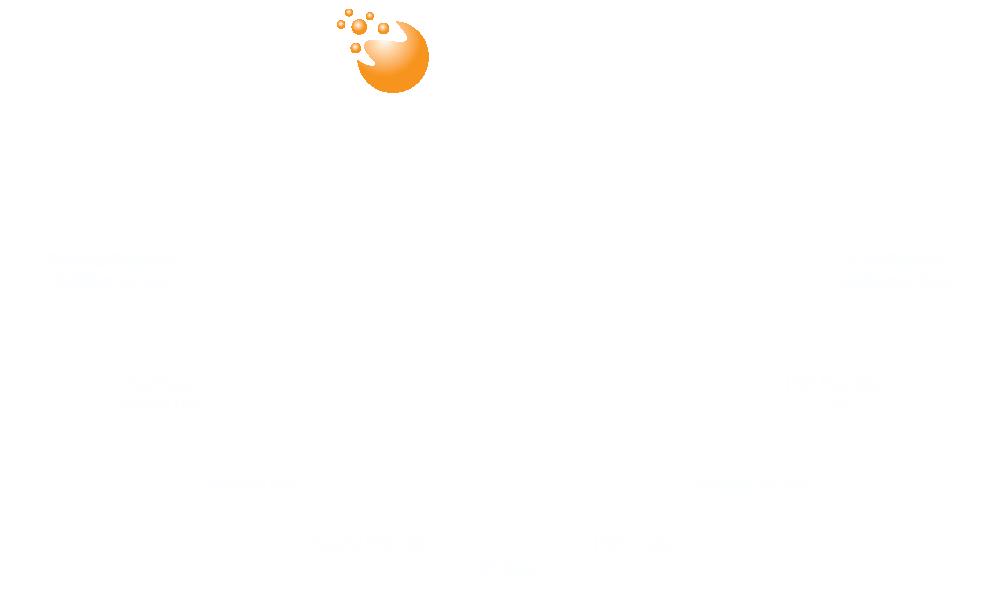 ProSellus-info-graphic